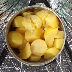 Fig. 17. Les pommes de terre (0,6 kg)