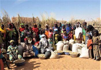 Sahara Sahel Foods 2017