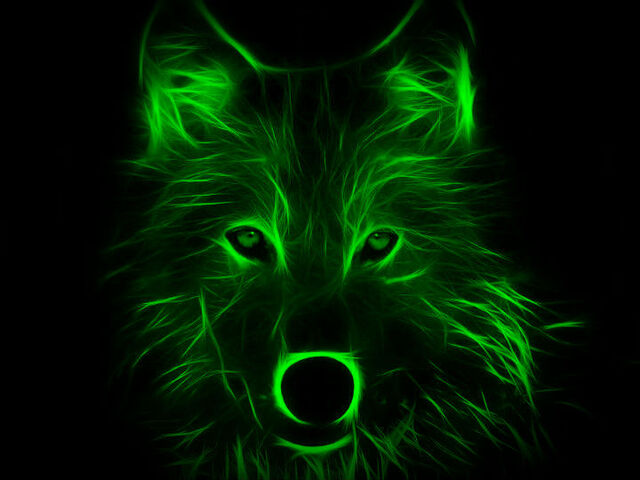 File:Kingwolf4.jpg