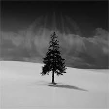 File:Freezing Tree.png