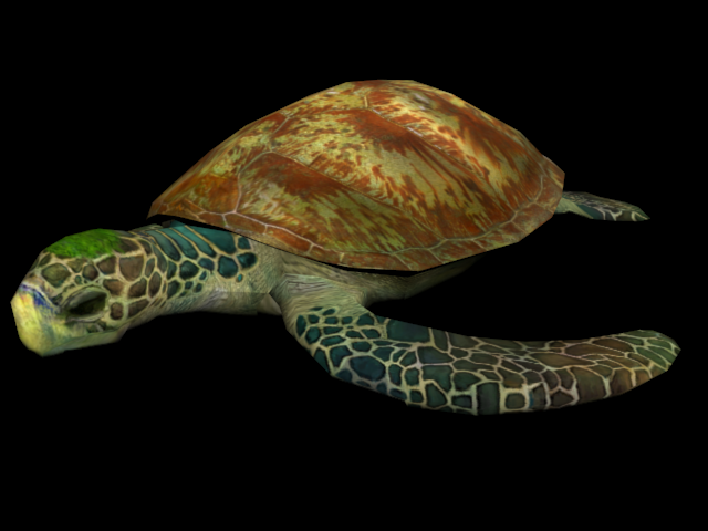 File:Turtle (Aquatic Base).png