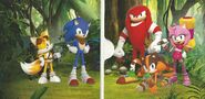Sonic Boom DVD Inlay