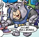 MP Bull Bones Profile