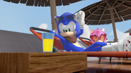 Sonic shades lifted up