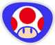 Mario Sonic Rio Toad Flag.png