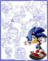 Sketches Sonic the Hedgehog by herms85