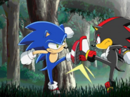 Ep35 Sonic vs. Shadow 2