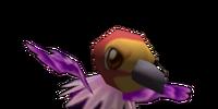 Condor (animal)
