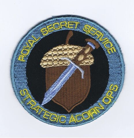File:RSS Patch.jpg