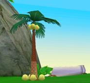 HG Palmtree