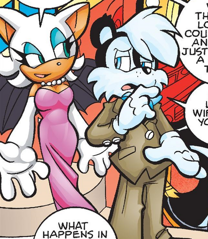 File:Rouge undercover.png