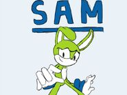 Sam the rabbit request updated