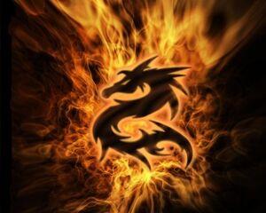 Fire d13