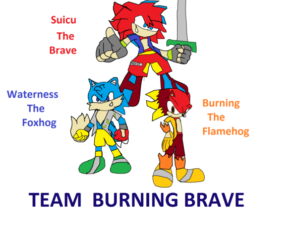 File:Team Burning Brave.png