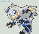 Velocity Star the Cat