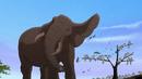 The Lion King II Simba's Pride Elephant Single Clas AT043901