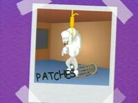 PatchesDeath