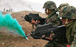 300px-Peruvian naval infantrymen carrying F2000 rifles