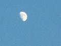 Thumbnail for version as of 07:55, November 7, 2012