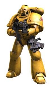 Sm tactical cutout