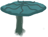 Umbrellachute