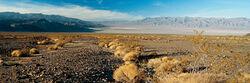 North american desert