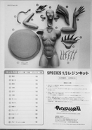 Sil Resin Kit Roswell Assemble
