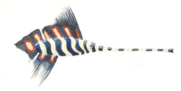 Trombone fish by sphenacodon