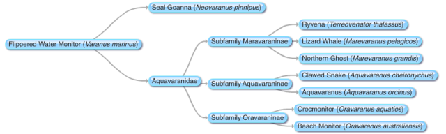 File:New Mosasaurs Phylogeny.png