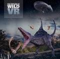 FIW-VR