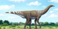 Spec Dinosauria: Pseudosauropoda