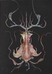 Neoctopus fucus