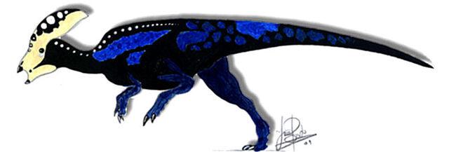 File:Parachlorosaurus viduatus.jpg