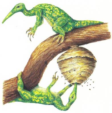 File:New Dinosaurs - Waspeater.jpg