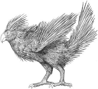 Brushtail porcuparrot