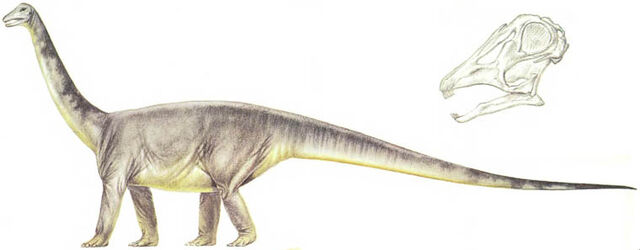 File:Titanosaur 2.jpg