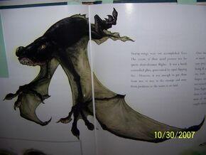 Swamp wing