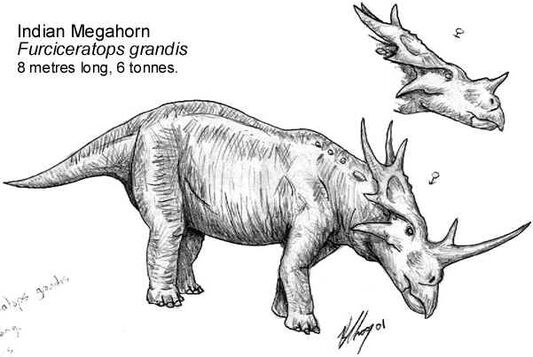 Megahorn1