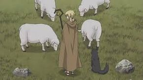 Nora and Sheep