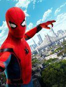 Spider-Man (Tom Holland)