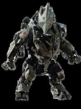 Rhino Suit new