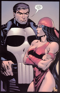 Punisher & Elektra