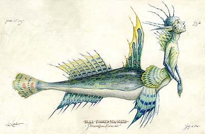 File:Blue-Finned Seamaid.jpg
