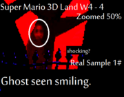Creepy gaming sm3dl ghost edited picture