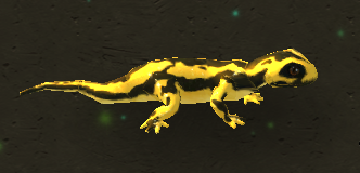 Fire Salamander.png