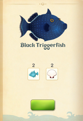 Black Triggerfish§Aquapedia