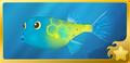 Yellow Boxfish§Headericon