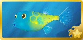File:Yellow Boxfish§Headericon.png