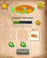 Ladder Wrasse§Aquapedia.png
