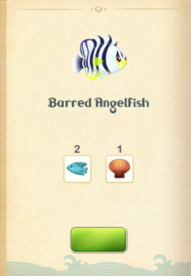 Barred Angelfish§Aquapedia